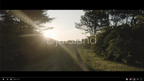 Dänemark Drohne & Kurzdoku